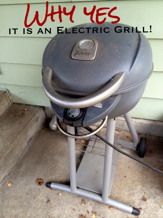 Patio Electric Grill Why all the Fuss